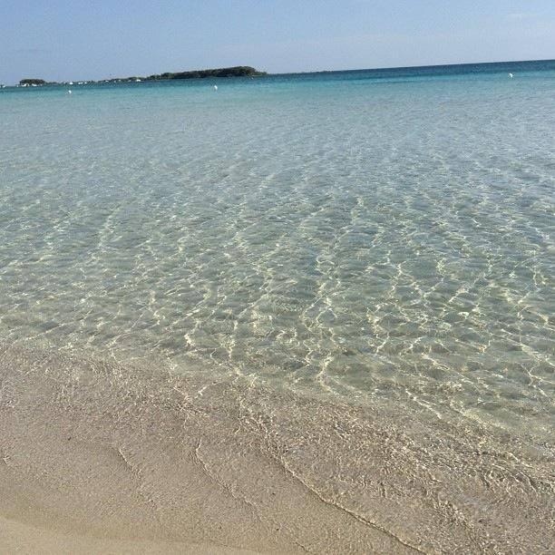 mare limpido di Porto Cesareo