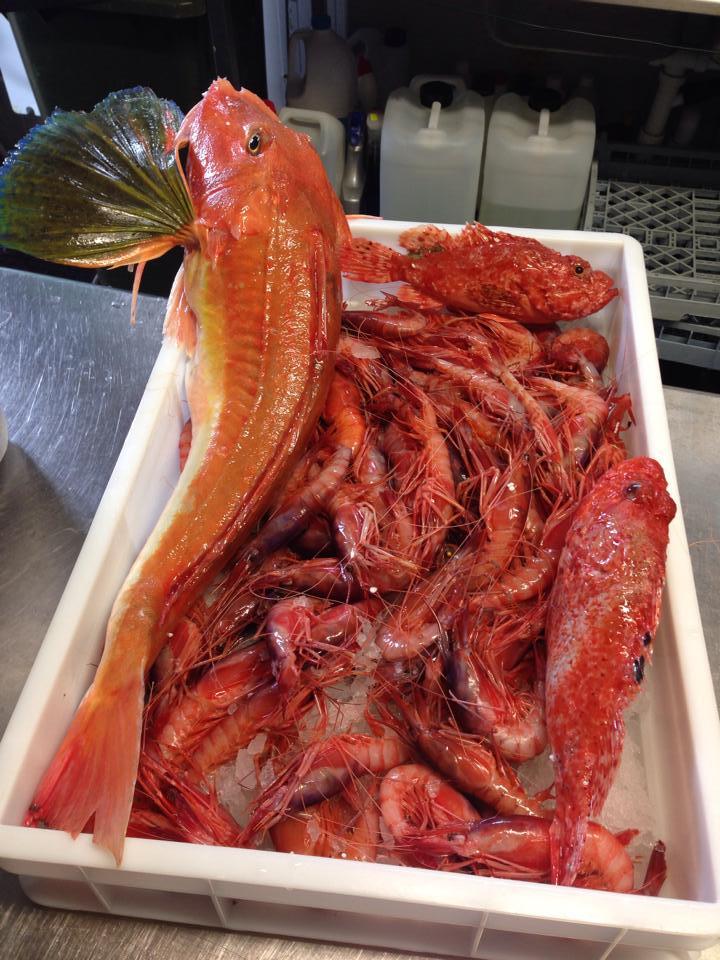 cucinare in famiglia del buon pesce fresco appena pescato a Torre lapillo
