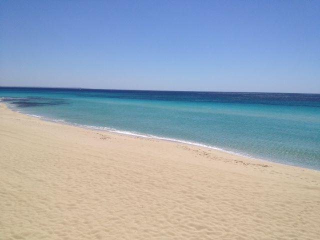 spiaggia di Punta Prosciutto sulla costa jonica di Puglia