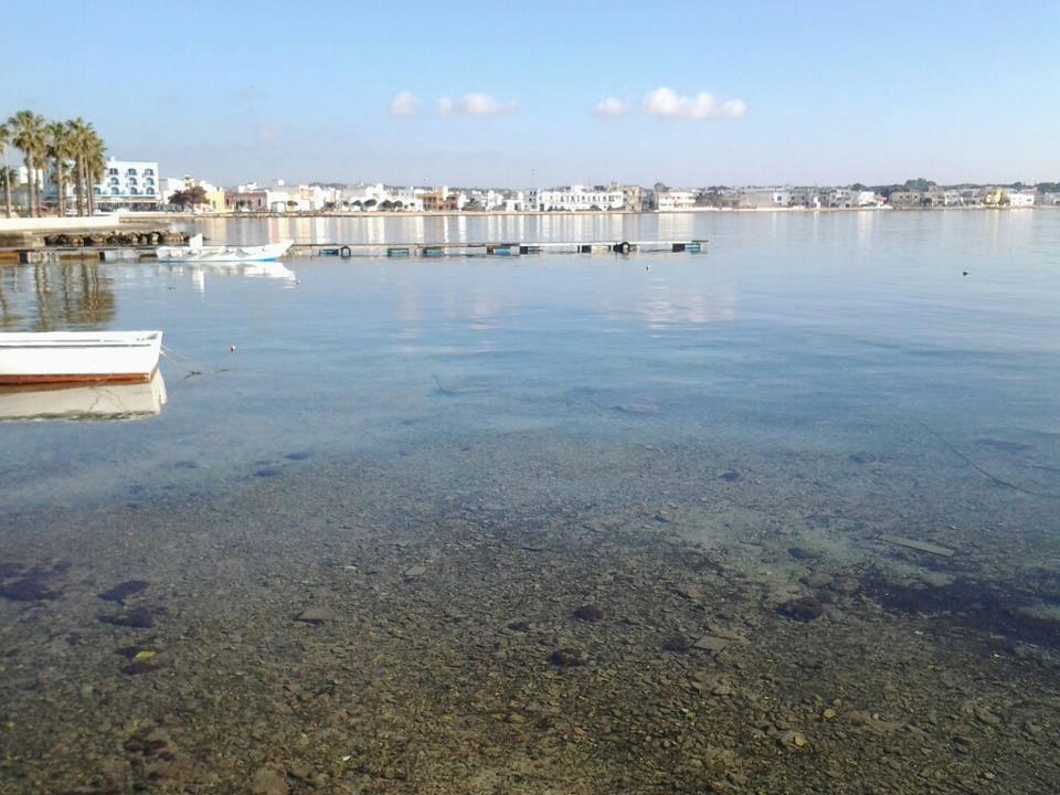 case da affittare sulla baia di Porto Cesareo