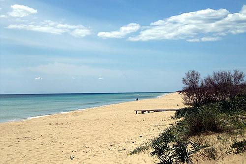 spiagge1.jpg
