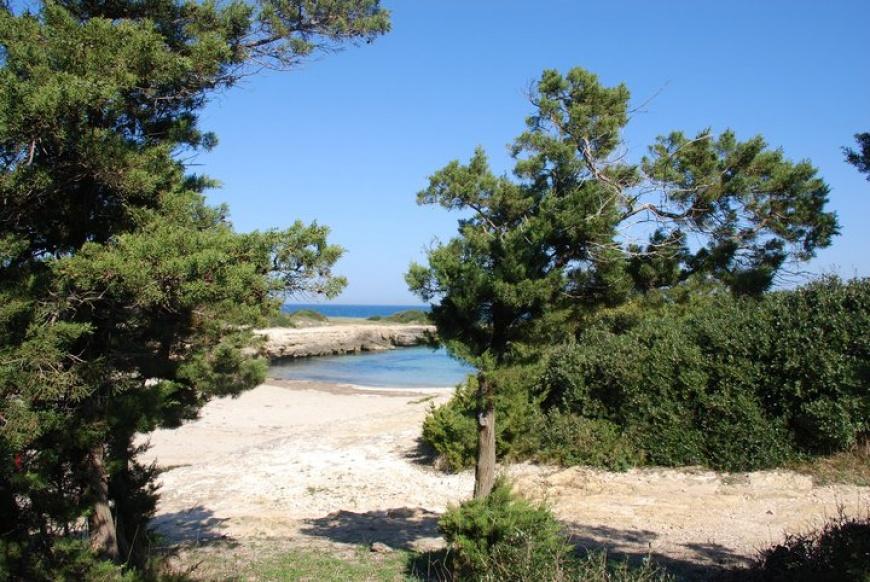campeggio1.jpg