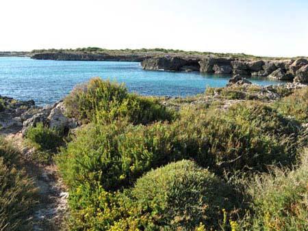 scogliera zona Porto Cesareo Lecce