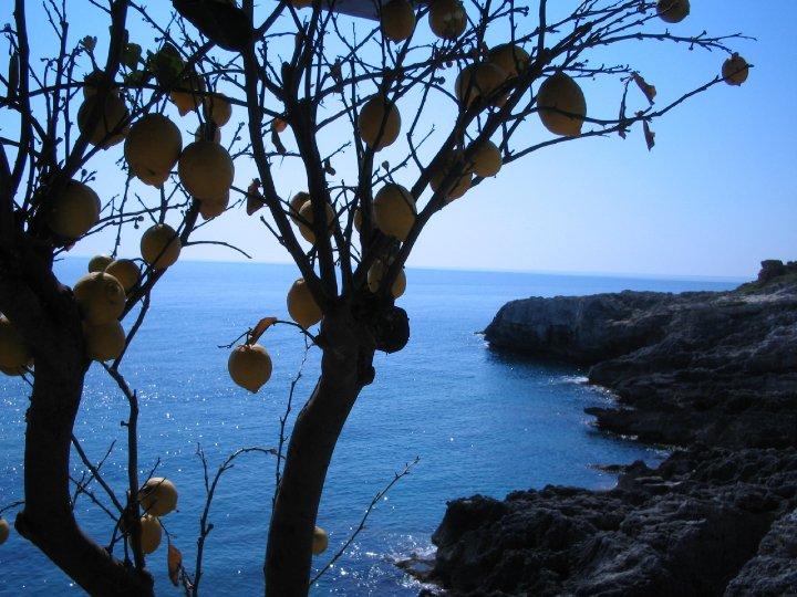 panorama della costa adriatica di Santa Maria di Leuca