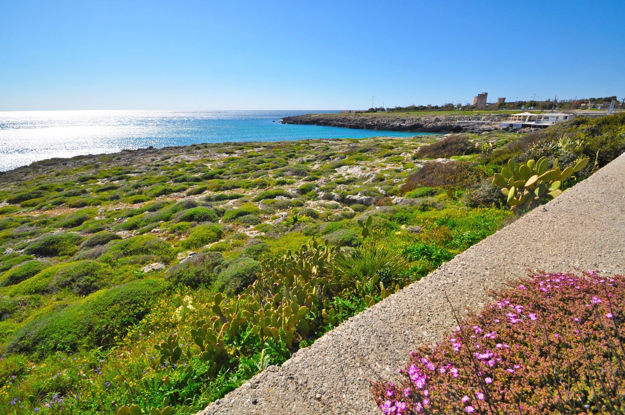 costa di scogliera a Torre Suda vicino al Lido balneare attrezzato Mahia