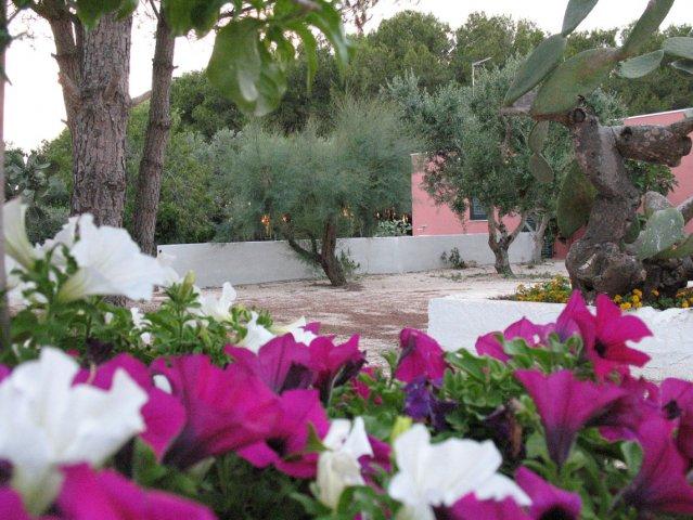 Giardino curato B&B Tenuta Doxi Sannicola - Gallipoli, Lecce
