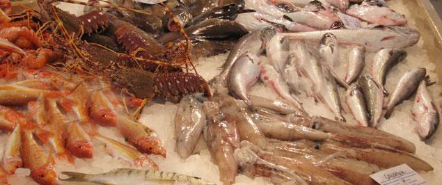 pesce freschissimo a Castro marina