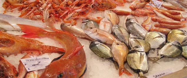 pescherie di castro marina