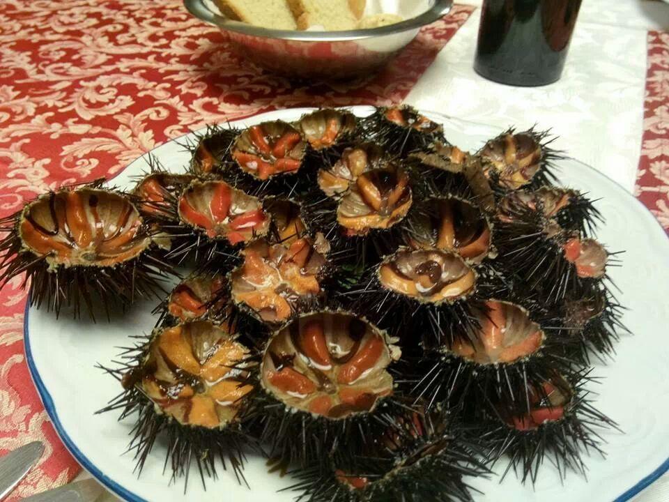 ricci di mare da gustare al ristorante di Castro marina (Puglia)