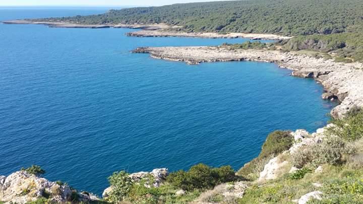 Mare splendido in vacanza al B&B Villa del Sole a Porto Cesareo