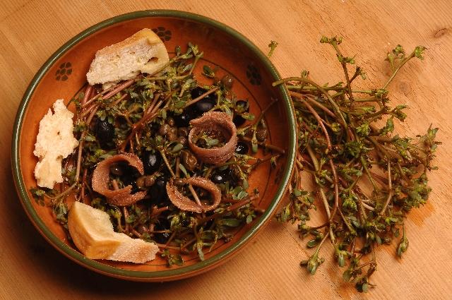 Alici e olive nere