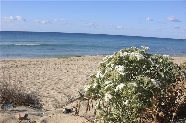 Spiaggia Torre Vado, Lecce