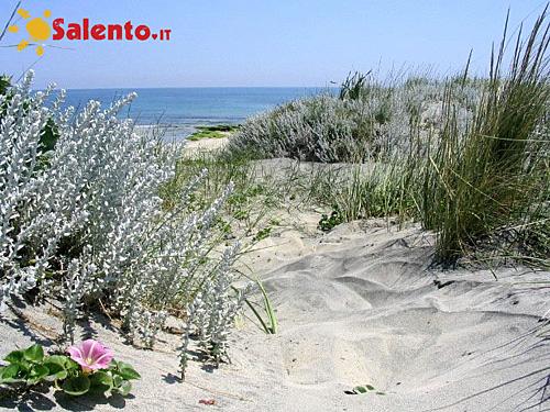301 moved permanently - Torre specchia spiaggia ...
