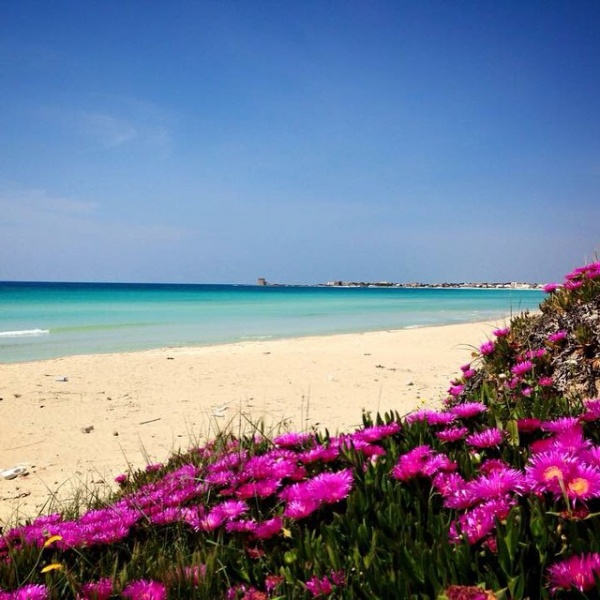 Matrimonio Spiaggia Porto Cesareo : Foto torre lapillo immagini e di su