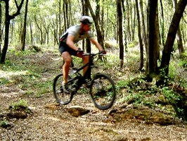 lecce-mountain-bike_.jpg
