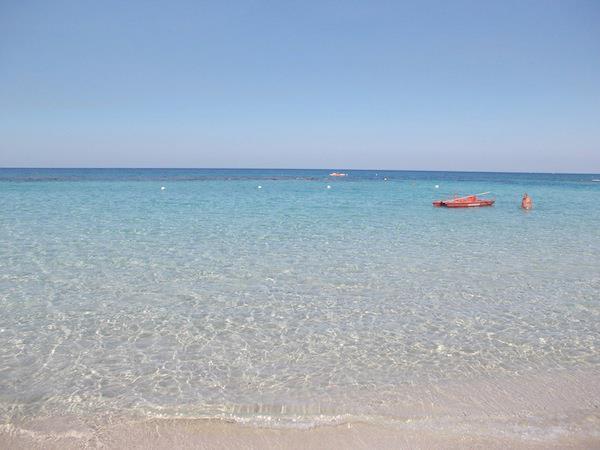 Matrimonio Sulla Spiaggia Puglia : Ristorante ulivo bianco padula bianca gallipoli lecce su