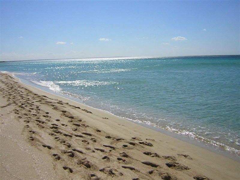 Matrimonio Spiaggia Salento : Samana beach porto cesareo lecce su salento